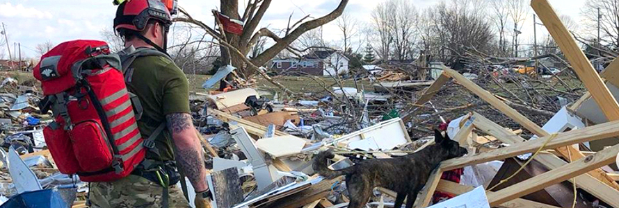 A first responder and K-9 dog stand surrounded by building and tree debris.